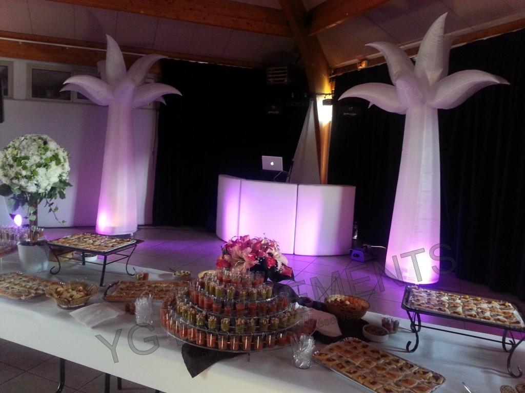 Decoration lumineuse exterieur mariage la c r monie de for Decoration lumineuse exterieur